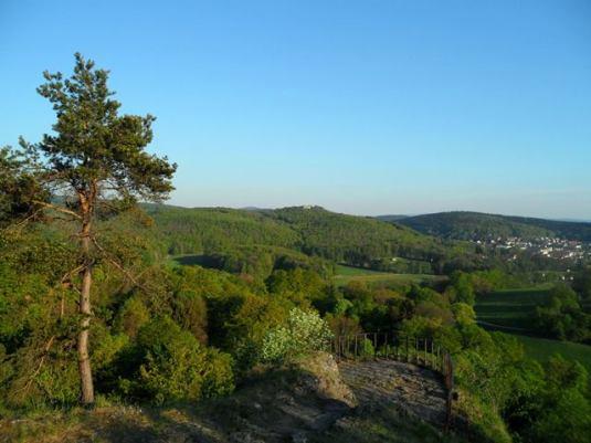 Der Altensteiner Park heute: Blick vom Morgentor Richtung Burgruine Bad Liebenstein